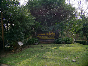 Photo: Sai Yok National Park