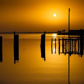 Dawn by George Bloise - Landscapes Sunsets & Sunrises ( sunrises, trunks, lake, bridge, yellow, black )