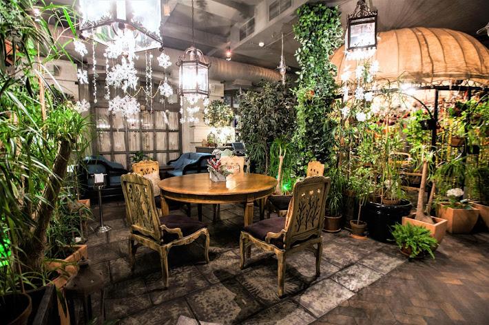 Фото №4 зала Зал «Оранжерея»