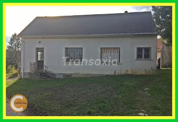 maison à Léré (18)