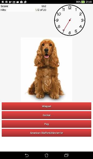犬のクイズ品種!