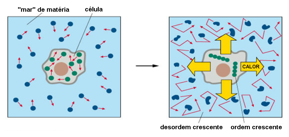 Termodinamica da celula 02.png