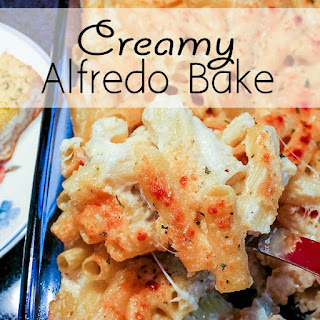 Creamy Alfredo Bake