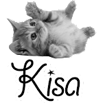 Kisa Icon