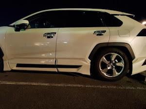 RAV4 [6BA-MXAA54] 4WD・G・CVTのカスタム事例画像 NAOさんの2021年01月06日19:40の投稿