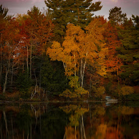 Morning reflection by Michael Haagen - Landscapes Forests ( sunrise, fall colors, fall, reflection, woods,  )