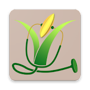 App Icon for Rice Doctor Odisha App in Czech Republic Google Play Store
