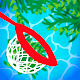 Download Clean the Pool! For PC Windows and Mac