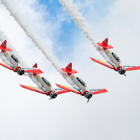 T-6 Squadron by Robert George - Transportation Airplanes