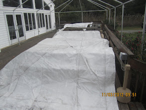 Photo: Drying canopy before folding and putting away till spring time.