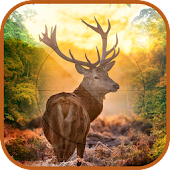 3D Ultimate Deer Hunter