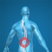 Back Pain Relieving Exercises