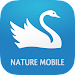 iKnow Birds 2 PRO - Europe icon