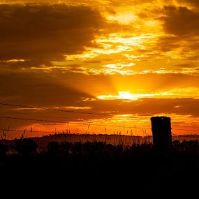 Farmers Sunset by Daniel Wheeler - Landscapes Sunsets & Sunrises ( clouds, farm, sunset, australia, landscape )