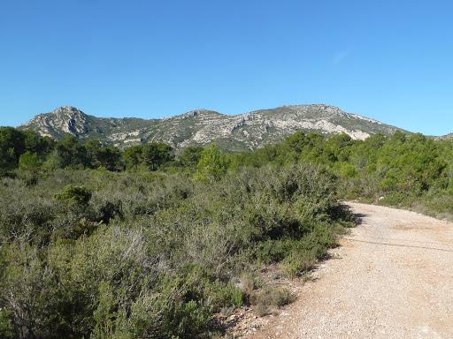 Puig de la Cabrafiga