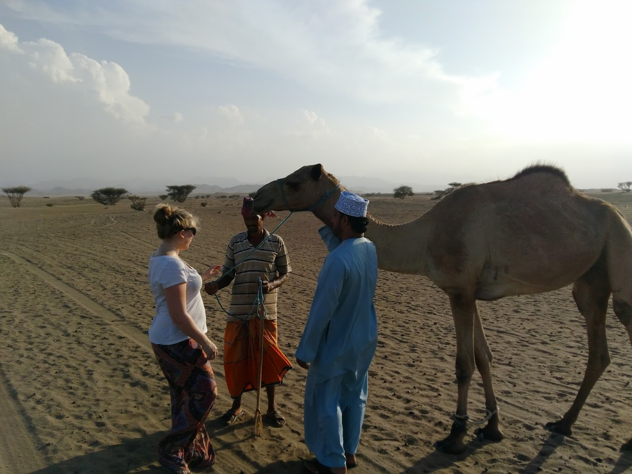 meeting a camel in oman desert american holiday