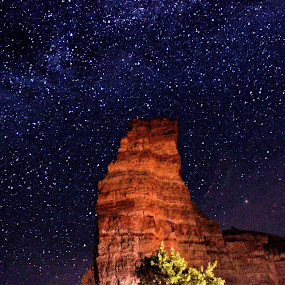 Under the Night Sky by LaDawn Park - Landscapes Starscapes