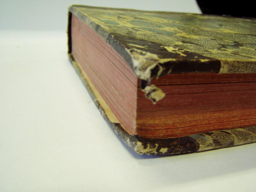 könyv sarka