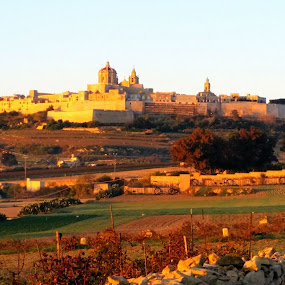Mdina by Amadeo Axiak - Instagram & Mobile Android