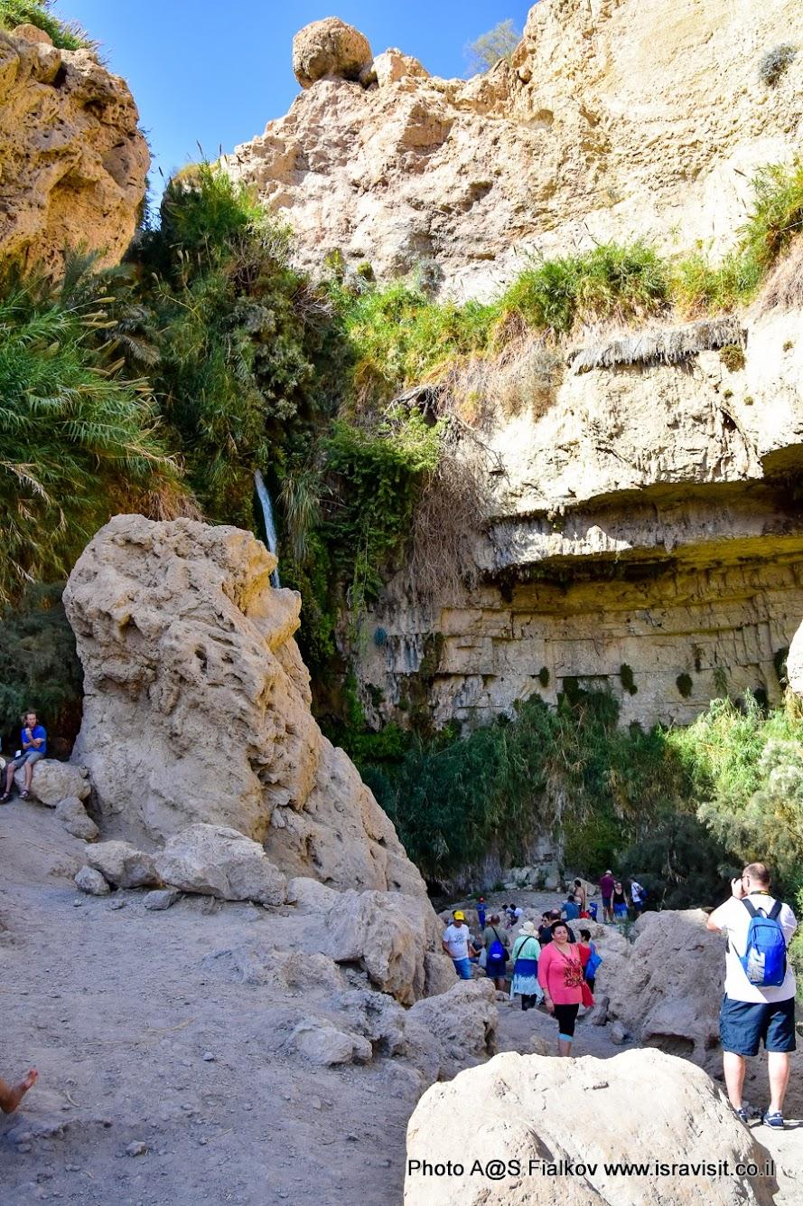 У водопада Давида. Экскурсия в Иудейской пустыне. Заповедник Эйн-Геди. Израиль.