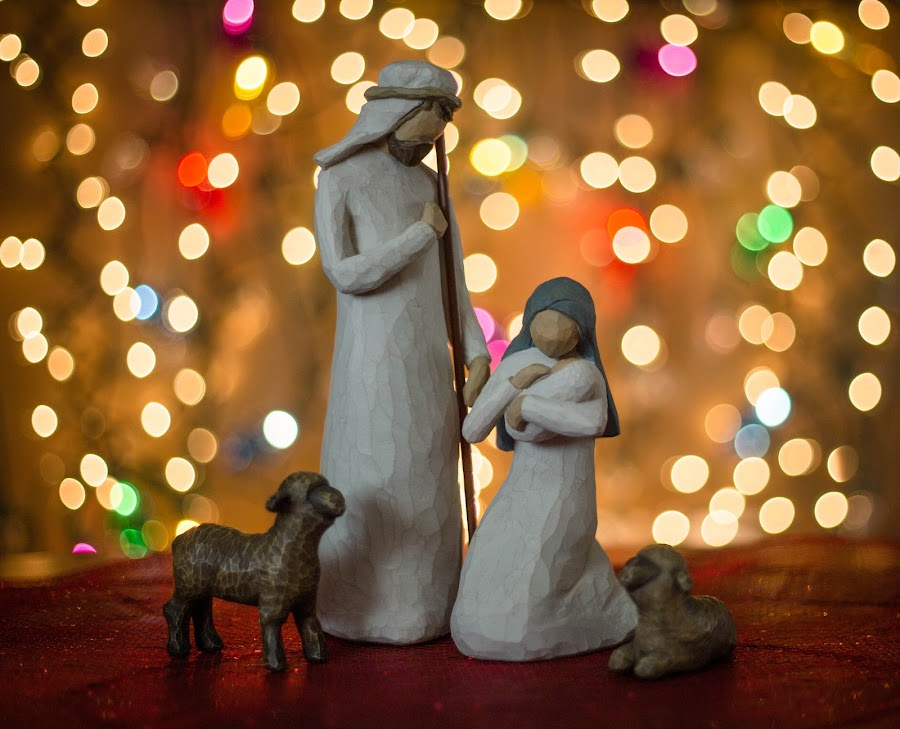 The Reason by Laura Gardner - Artistic Objects Other Objects ( lights, joseph, nd, jesus, christmas, sheep, mary, nativity )