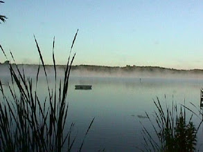 Photo: Misty morning on Little Cedar