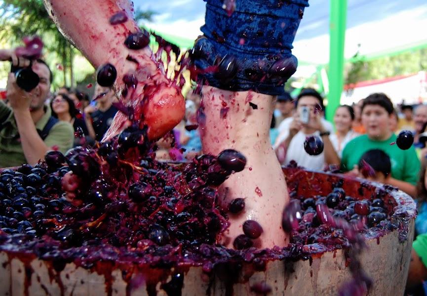 Wine festivities Spain
