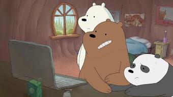 Meet the Bears