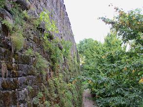 Photo: Warowne mury fortecy w Gorizia.