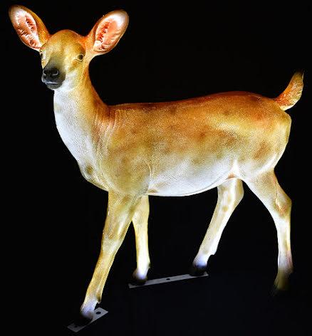 Kalvhjort Bambi