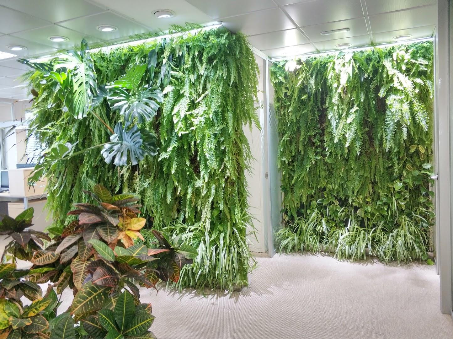 Jardín vertical instalado en las oficinas de Ferring en Madrid