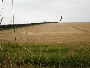 Photo: Norfolk Coast Path - From Holme to Brancaster