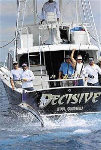 TIGHT LINES: Queenstown-born angler Captain Brad Philipps manoeuvres his charter sport fishing vessel Decisive after a on a sailfish is hooked by a client off the Pacific coast of Guatemala, where he now runs a successful charter fishing business