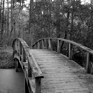 bridge b&w.jpg