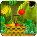 Fruits Catch icon