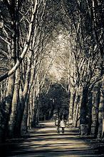 Photo: Spring walk ©http://markuslandsmann.zenfolio.com/
