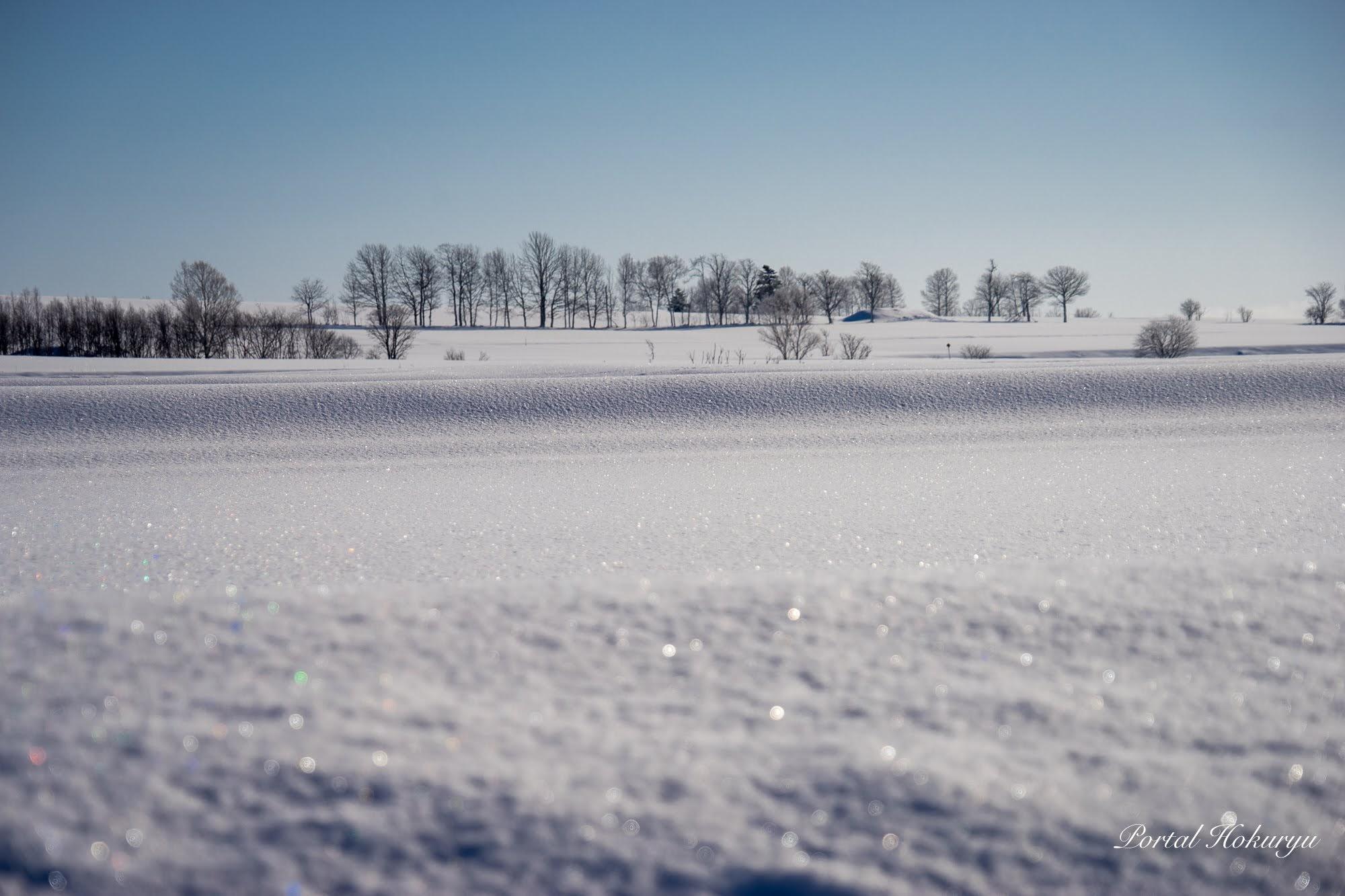 雪原のきらめき