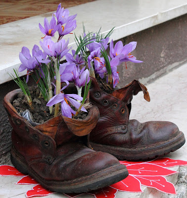 creatività per il vecchio scarpone di ariosa