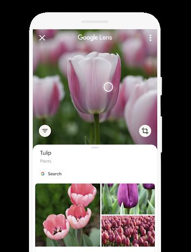 Google レンズのユーザー インターフェース