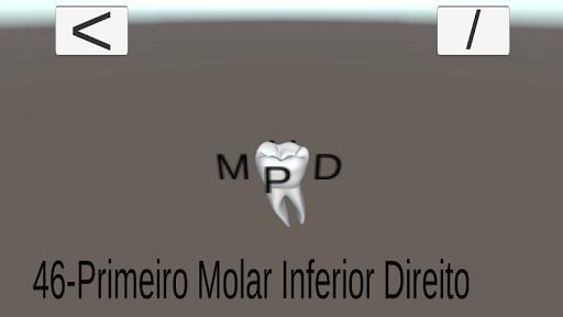 Escultura Dental - Dentes 3D