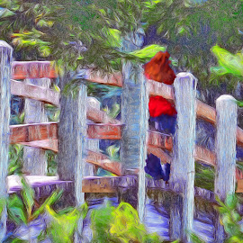 Red shawl by Gaylord Mink - Digital Art People ( bridge, people, red shawl, trees )