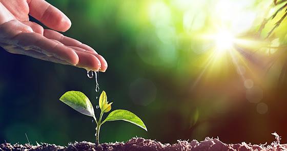La gota de agua en la agricultura