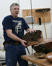 Photo: Here's how to find a nice, round bowl blank in it. Alan uses a circular disc of wood, or other material, with a nail in the center. The disc is nailed to the burl, and the disc is then used as a guide for chainsawing around.