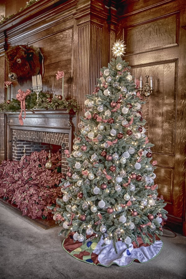Vanderbilt Mansion Guest House by Debbie Quick - Public Holidays Christmas ( debbie quick, hyde park, tree, christmas, fireplace, holiday, debs creative images, new york, guest house, home, vanderbilt mansion, decoration, hudson valley )