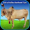 Eid-ul-Adha Qurbani Tips