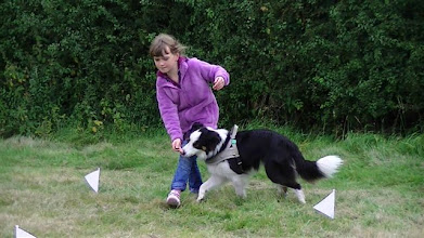 Photo: Georgina takes over as Galu's handler and seems to have him under control... nice heelwork Georgina!