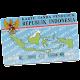 Cek E-KTP Indonesia APK