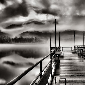 And The Fog Rushes In by Vickie Barnhill - Landscapes Weather ( b&w, fog, sunset )
