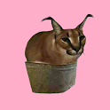 floppa.png icon