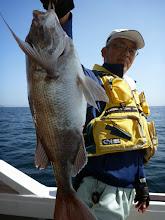 """Photo: """"ヤマグチさん""""も真鯛! ここの真鯛、サイズいいぞー!"""